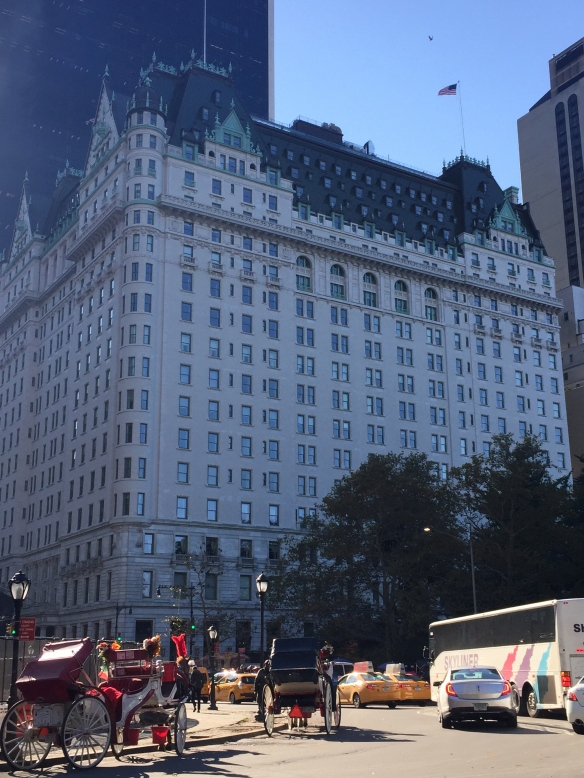Plaza Hotel, where my Dad and I watched the NY marathon 30+ years ago. Never in that 19 year old's wildest dreams did I imagine I'd someday be a runner in that race. (PS - I took this pic the day after the race.)