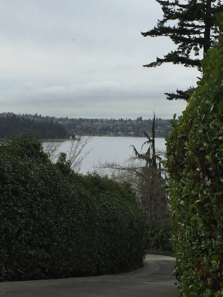 ~ Mile 10 Looking toward Seward Park from Mercer.
